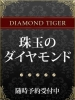 珠玉のダイヤ